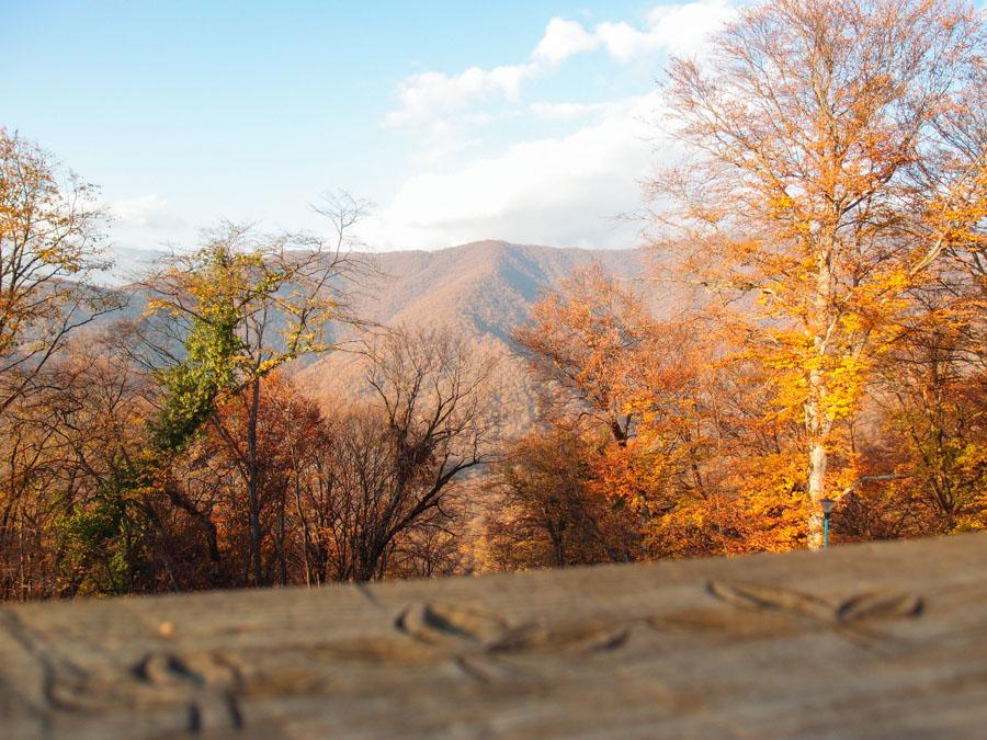 Вид из Некреси на горы Кахетии