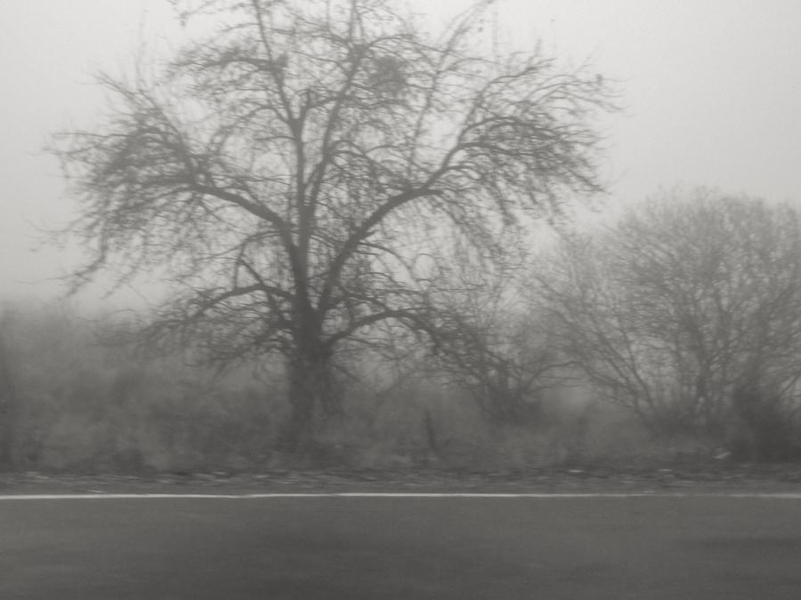 По дороге в крепость Уджарма
